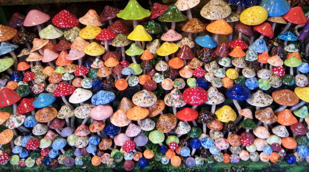 Mushroom ceramics
