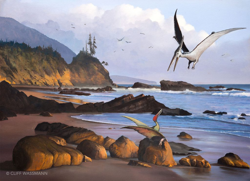 Pterosaurs along the coast